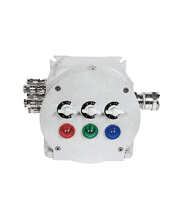 Atex Junction Box Zayed IP66 · Atex Delvalle