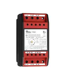 Ex Protection Relay Module · Atex Delvalle